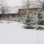 stimmenimwald-schnee