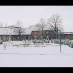 stimmenimwald-schnee01