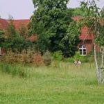 stimmenimwald-sommer02